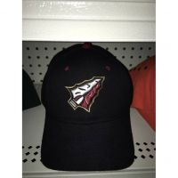 Zephyr Black Florida State Hat