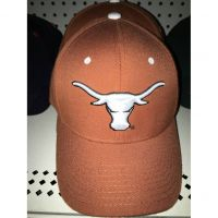 Texas Zephyr Fitted Cap
