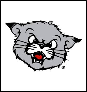 University of Cincinnati Bearcats